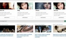 5 Free Portfolio WordPress Themes - WP Smashing Themes | Free & Premium WordPress Themes | Scoop.it
