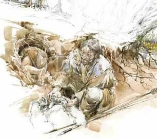 Pour la Science - La domestication du loup | Archeology on the Net | Scoop.it