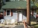 Mole Guests 2 | BIG BEAR CABINS 1-800-381-5569 | Big Bear Cabins | Scoop.it