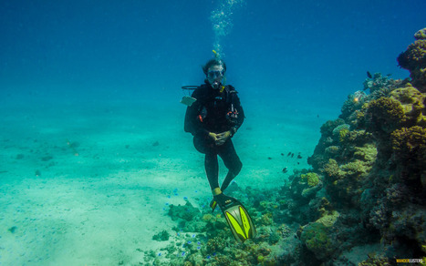 10 Steps To Responsible Scuba Travel | All about water, the oceans, environmental issues | Scoop.it