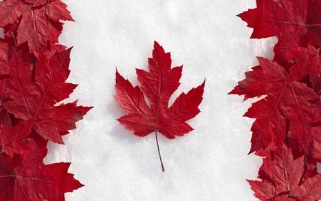 Où travaillent les titulaires de doctorat au Canada ? | Ecole des Doctorants Lille ED2 | Scoop.it