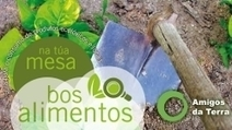 Apúntate a cultivar en la huerta ecológica de Ourense   ECOagricultor   Soberanía Alimentaria   Scoop.it