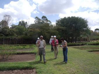 ILRI forage genebank in thespotlight | Agricultural Biodiversity | Scoop.it