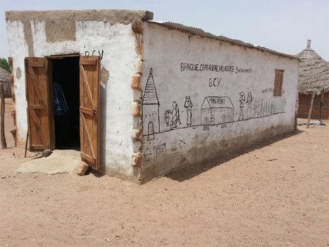 La Banque de céréales villageoise du village de Sinthiou Malème au Sénégal | developpement Podor Sénégal | Scoop.it