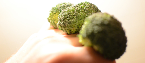 Cancer and the Animal-to-Plant Protein Ratio | NutritionFacts.org | The Basic Life | Scoop.it