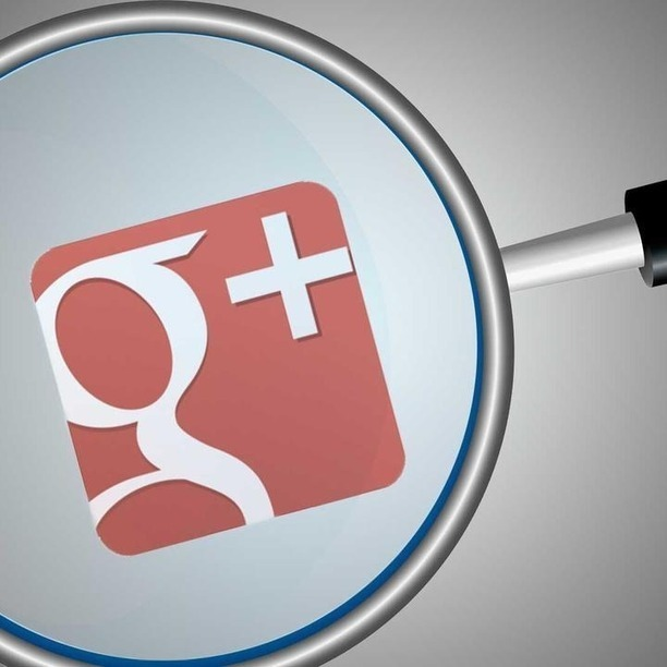 Google Brings Intelligent Search to Google+ Photos