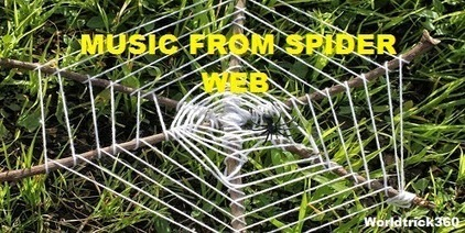 Music from spider web | Worldwidenetworkings and worldtrick360 | Scoop.it