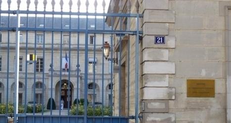 Geneviève Fioraso : un non-remplacement qui inquiète | Enseignement Supérieur et Recherche en France | Scoop.it