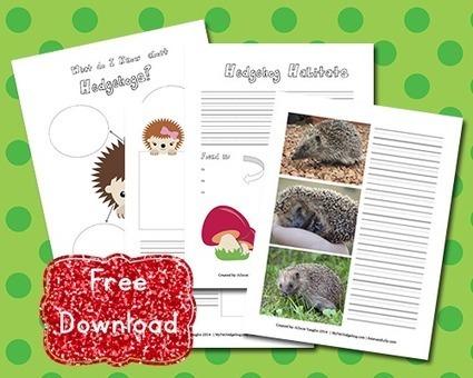 Download: Free Hedgehog Notebooking Printable | Hedgehogs | Scoop.it