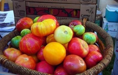 Oui, l'agriculture biologique peut nourrir la planète - Rue89 | Ca m'interpelle... | Scoop.it