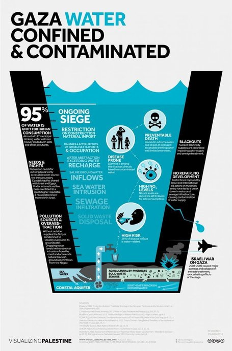 Gaza Water Confined & Contaminated | Visualizing Palestine | Walkerteach Geo | Scoop.it