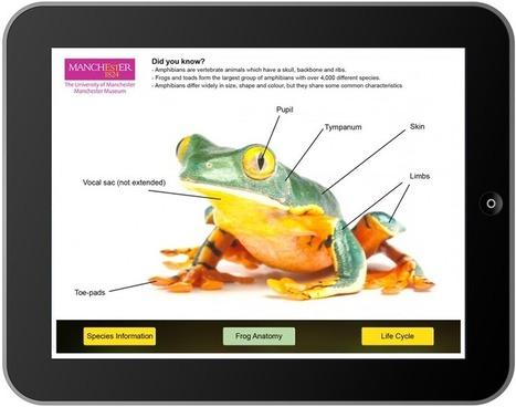 Vivarium App Development | AR in Education | Scoop.it