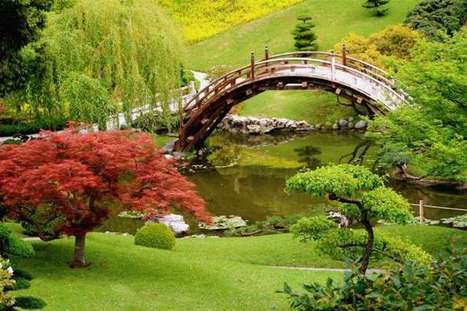 Beautiful Japanese Gardens | A Love of Japanese Gardens | Scoop.it