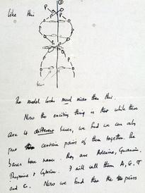 Pagan 5.3 MDD por carta sobre descubrimiento del ADN :: El Informador | 3ª Evaluacion Alvaro Pasucal | Scoop.it