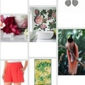 15 Stats Retailers Should Know About Pinterest | Pinterest | Scoop.it