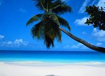 Ofertas de vacaciones en HALCON VIAJES 2 x 1 | Tu Viaje Barato | Scoop.it