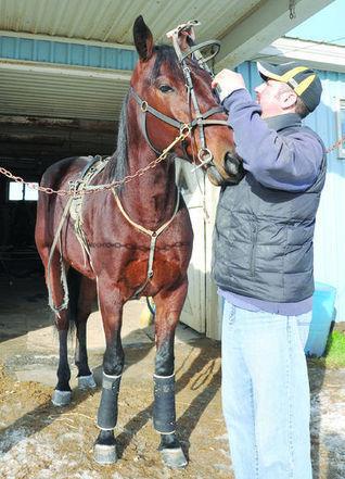 10,000 jobs lost: horse trainer | Horse Racing Industry | Scoop.it