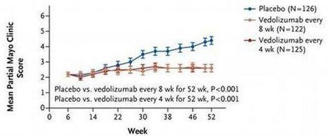 Maladie de CROHN et RCH : Vedolizumab, un nouveau traitement efficace | Santé blog | maladie de crohn | Scoop.it