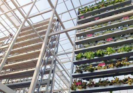 Vertical Farming Goes Commercial in Singapore | Everything I love! | Scoop.it