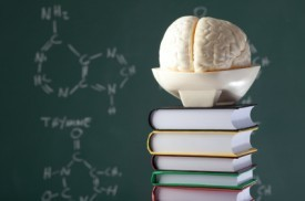 Dopamine and Learning: What The Brain's Reward Center Can Teach Educators | Great Books | Scoop.it