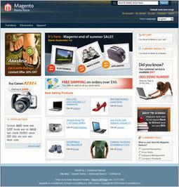 !!! ECOMMERCE WEBSITE FROM £199 !!! | postzoo.com | Scoop.it