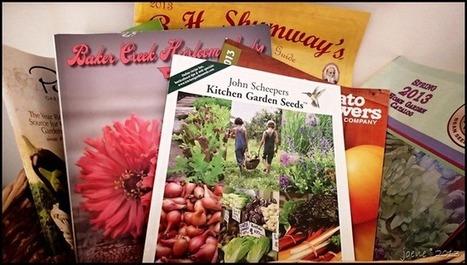 Get growing with seeds–You Can Grow That! - joene's garden   Annie Haven   Haven Brand   Scoop.it