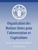 La FAO, le FIDA et le PAM en appellent au G20 pour redoubler d'efforts et combattre la faim | Questions de développement ... | Scoop.it