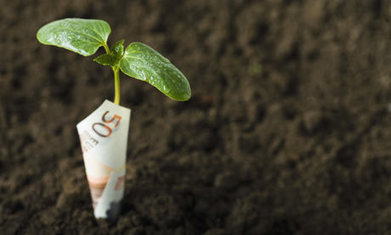 Obligations vertes : le grand décollage   Décisions durables   Infos Développement Durable et RSE   Scoop.it