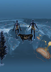 Unveiled: Earth's Viral Diversity - DOE Joint Genome Institute   MycorWeb Plant-Microbe Interactions   Scoop.it
