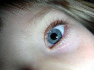 How Blue Eyed Parents Can Have Brown Eyed Children | Understanding Genetics | Exploring Biology | Scoop.it