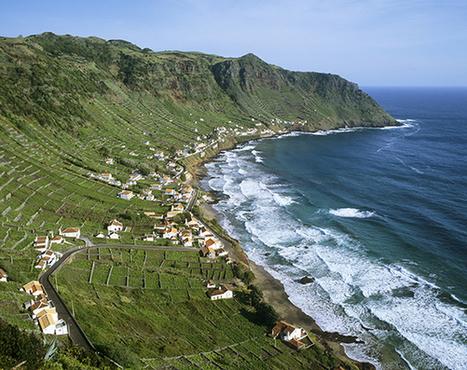 Volcano Wine in the Azores   Azores   Scoop.it