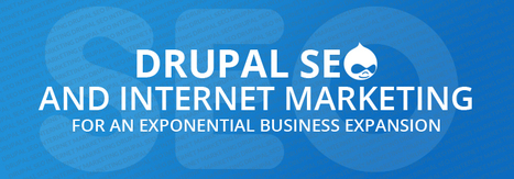 Drupal SEO and Internet Marketing For an Exponential Business Expansion | Drupal Services | Scoop.it