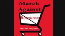 Global Protest in 300 Cities Will Take Aim on Monsanto, Trying to push off their GMO food, EXTREMELY HUMAN TOXIC | News You Can Use - NO PINKSLIME | Scoop.it