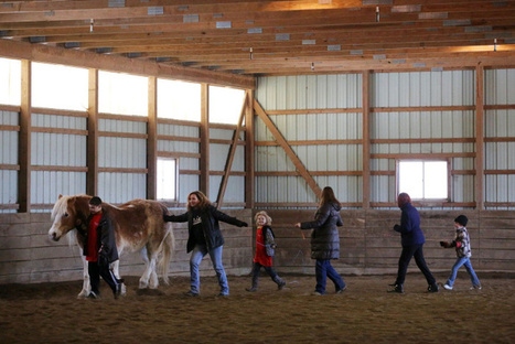 Horses make sense for kids in therapy - Columbus Dispatch | Farm Animals | Scoop.it