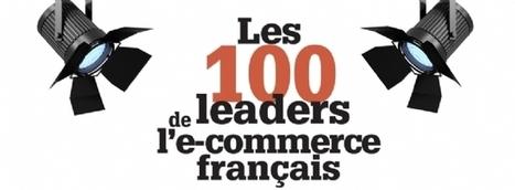 Les indicateurs-clés et les stratégies des leaders 2013 - Les 100 sites marchands qui comptent - classement 2013 | E-commerce & Small Shops | Scoop.it