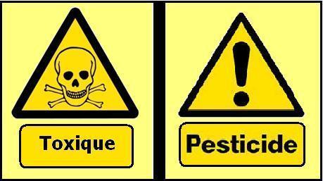 Weo - Ces pesticides qui perturbent nos hormones   Abeilles, intoxications et informations   Scoop.it