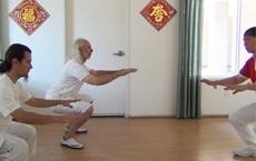 Vous cherchez à faire du tai chi montréal-shibashicanada | Montréal Qigong de Shaolin | Scoop.it