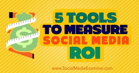 Five Tools to Measure Social Media ROI | Social Media Examiner | SocialMoMojo Web | Scoop.it