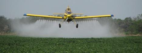 Le déclin massif des insectes menace l'agriculture   La guerre des ...   Environnement et developpement durable   Scoop.it