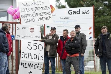 Gad. Une audience décisive le 9 octobre | Ouest France Entreprises | Porc Magazine | Scoop.it