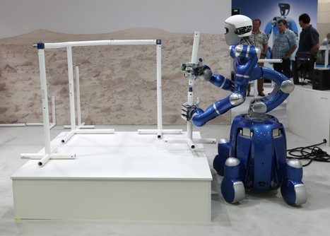 Robots Will Steal 50% of Human Jobs in Near Future, says MIT and Professors | Transition Point! | Scoop.it