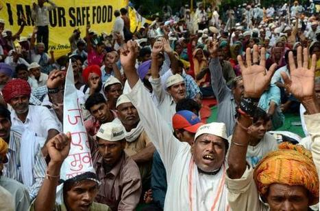 You have quit Europe, now quit India, farmers tell Monsanto | GM free BC | Scoop.it