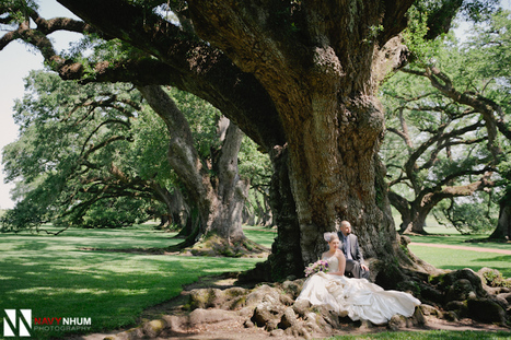 Oak Alley Plantation Wedding | New Orleans | Destination Wedding Photographer | Oak Alley Plantation: Things to see! | Scoop.it