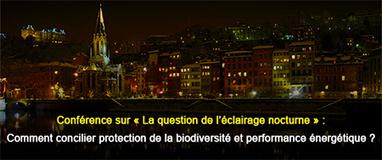 Eclairage public : 5 communes de la Métropole de Lyon ont engagé l'extinction nocturne- | Marketing et management  public | Scoop.it