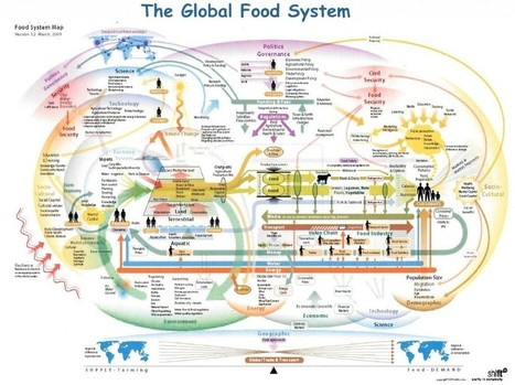 Why Agricultural Systems Thinking? | IB GEOGRAPHY The geography of Food and Health PEMBROKE | Scoop.it