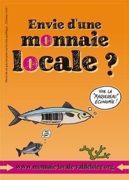 Monnaies Locales Complémentaires . . . vers une monnaie locale en Touraine ? | Innovation sociale | Scoop.it