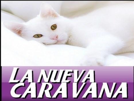 LA NUEVA CARAVANA: BIOTECNOLOGIA | industria   aplicada a la biologiaII | Scoop.it