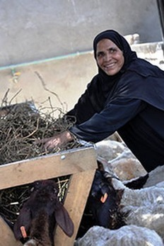 First women's cooperatives changing lives and lands in Upper Egypt | Nubia; daily life and cultural heritage | Scoop.it