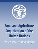 World food prices rise, stay close to crisis levels-FAO | The Glory of the Garden | Scoop.it