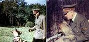Nazis tentaram ensinar cães a falar e comunicar como pessoas - Vida - Sol | Cinófilia | Scoop.it